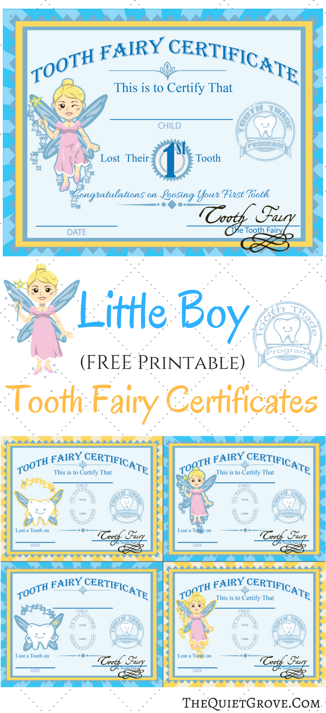 photo relating to Tooth Fairy Printable named No cost Printable Enamel Fairy Certificates ⋆ The Tranquil Grove