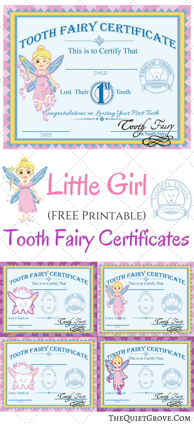 graphic regarding Printable Tooth Fairy Letter known as Cost-free Printable Enamel Fairy Certificates ⋆ The Serene Grove